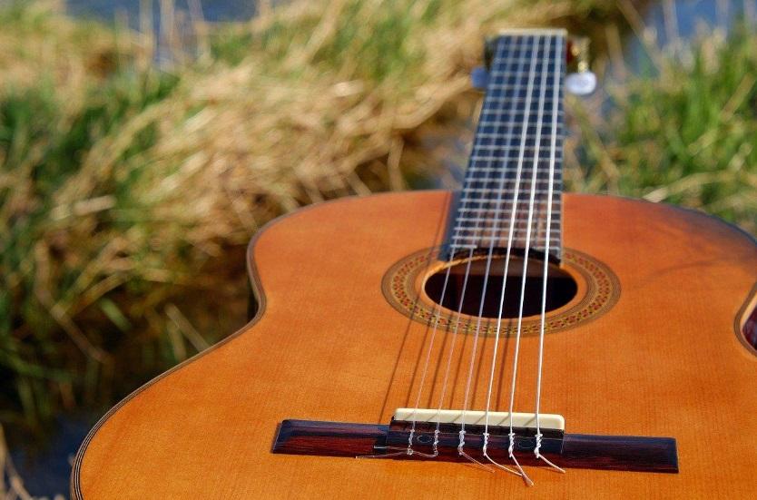 Une guitare posé sur l'herbe